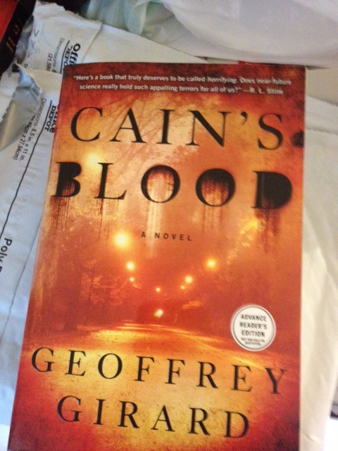 My First Flip Arc Project Cain And Cains Blood A Writers Vanity